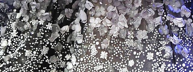 コレクションから探す刺繍のアイディア〜2014ss Elie Saab〜